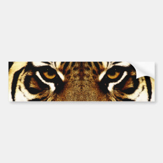 Eyes of a Tiger Bumper Sticker