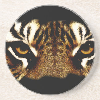 Eyes of a Tiger Coaster