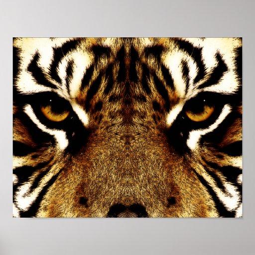 Eyes of a Tiger Print