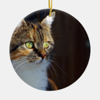 Eyes Wide Open Double-Sided Ceramic Round Christmas Ornament