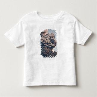 Eyjafjalljokull Volcanic Eruption Shirts