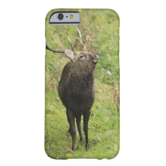 Ezo Deer Barely There iPhone 6 Case
