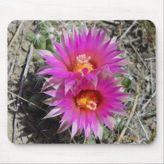 F0005 Ball Cactus Flowers (escobaria vivipara) Mouse Pad