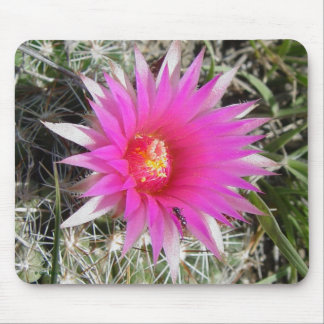 F0012 Ball Cactus Flower mouse pad