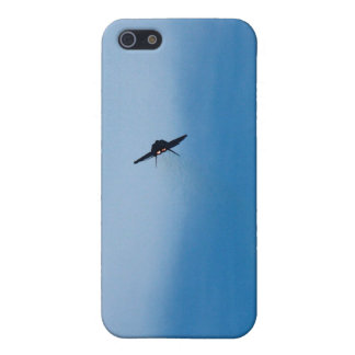 F22 Raptor photo iPhone cases iPhone 5 Cases