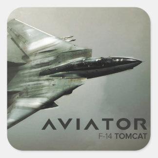 F-14 Tomcat Jet Fighter Square Sticker