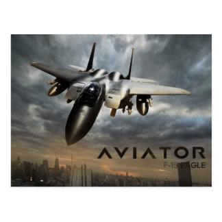 F-15 Eagle Jet Fighter Post Cards