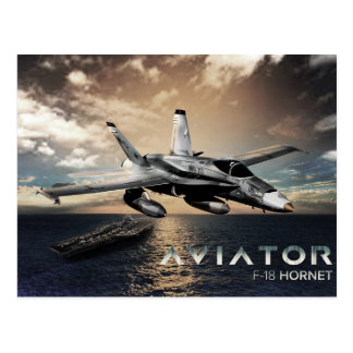 F-18 Hornet Fighter Jet Postcard
