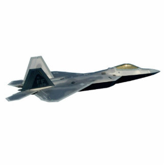 F-22 Raptor Cutout Photo Sculptures