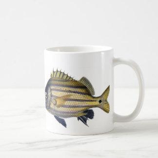 Fabulous Realistic Fish Painting Basic White Mug