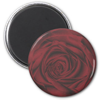 fabulous red rose refrigerator magnets