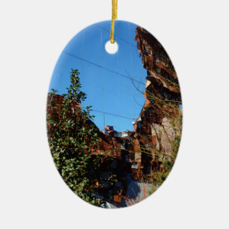 Fabulous Reflections in New York Christmas Ornament