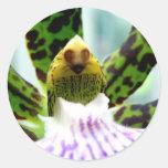 face in the flower round sticker