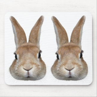 Face of 2 rabbits mouse pad