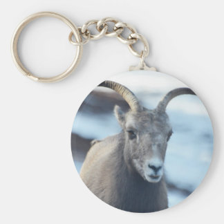 Face of a Bighorn Sheep Basic Round Button Key Ring