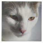 Face of a cat ceramic tile