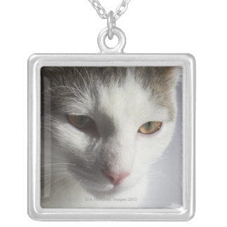 Face of a cat silver plated necklace