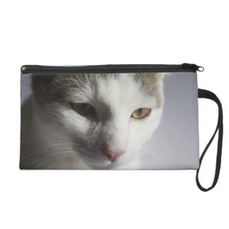 Face of a cat wristlet