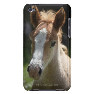face of foal barely there iPod cover