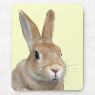 Face of rabbit mouse pad