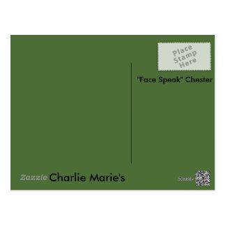 Face Speak Scarecrows Post Card