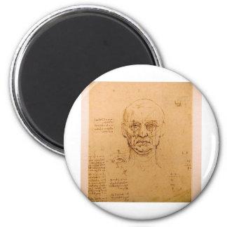 Facial Study Magnets