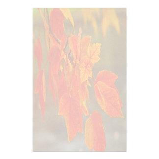 Faded Autumn Splendor Stationery