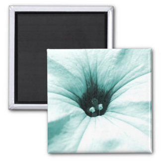Faded blue flower macro picture magnets
