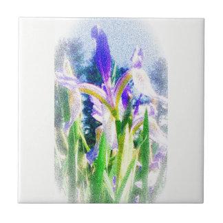 Faded Iris Tile
