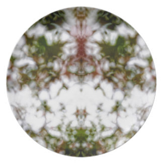 Faded kaleidoscope pattern plate