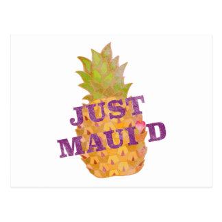 Faded Pineapple Postcard