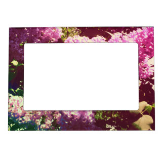 Faded Rainbow Lilacs Picture Frame Magnet