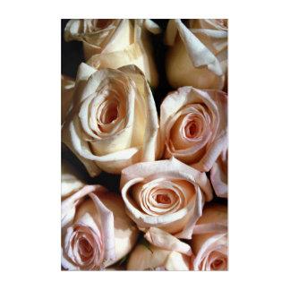 Faded Roses Acrylic Wall Art