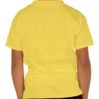 Faded Sunshine Sun Energy Fans T Shirts