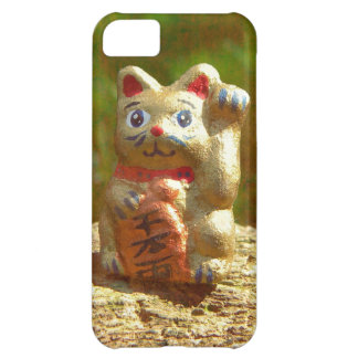 Fading Gold iPhone 5C Case