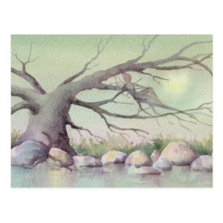 FAIERIE in the TREES by SHARON SHARPE Postcard
