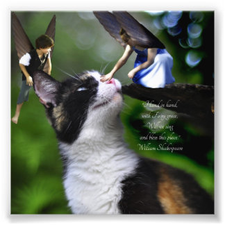 Fairies with Cat William Shakespeare Quote Print Photo Art