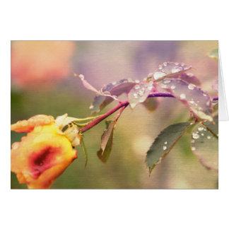 Fairy Drops Card