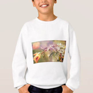 Fairy Drops Sweatshirt