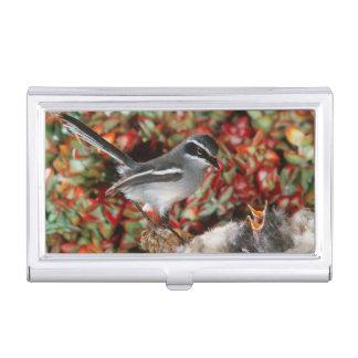 Fairy Flycatcher (Stenostira Scita) With Chick Business Card Holder