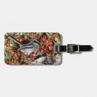 Fairy Flycatcher (Stenostira Scita) With Chick Luggage Tag