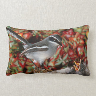 Fairy Flycatcher (Stenostira Scita) With Chick Lumbar Cushion