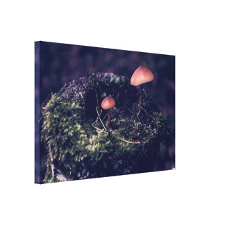 Fairy House- Single Canvas Canvas Print