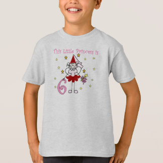 Fairy Princess 6th Birthday T-Shirt