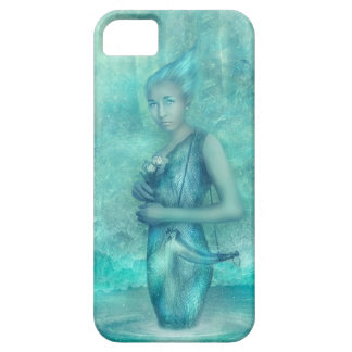 Fairy Wishes iPhone 5 Cases