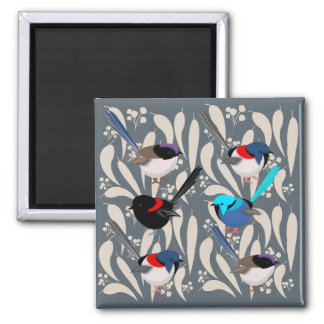 Fairy Wrens Magnet