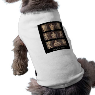 Faith Hope Charity by Raphael Doggie T-Shirt