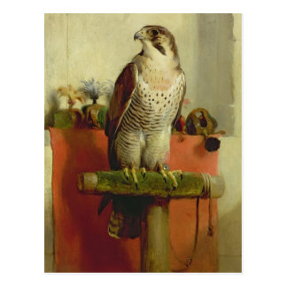 Falcon, 1837 postcards