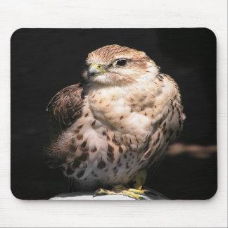 Falcon II Mousepad