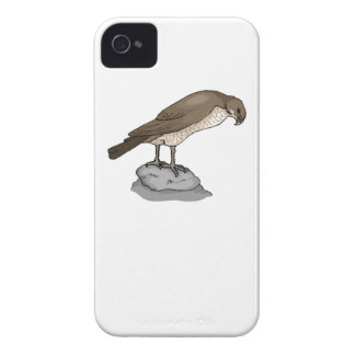 Falcon On A Rock iPhone 4 Case